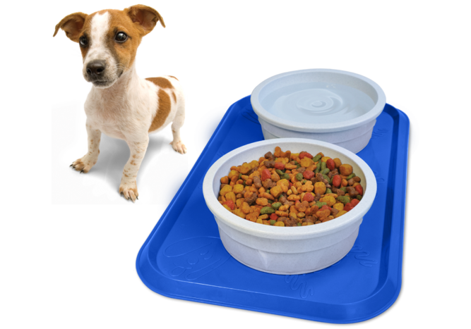 dog-dinnermat-1000x700